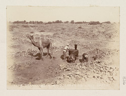 Brahmanabad, Hyderabad District, Sindh. Carrying away earth from the ruins 1526